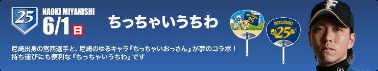 media_campaign_20140601